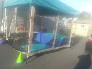 Tent used for treating veterinary rehab patients during the COVID pandemic.
