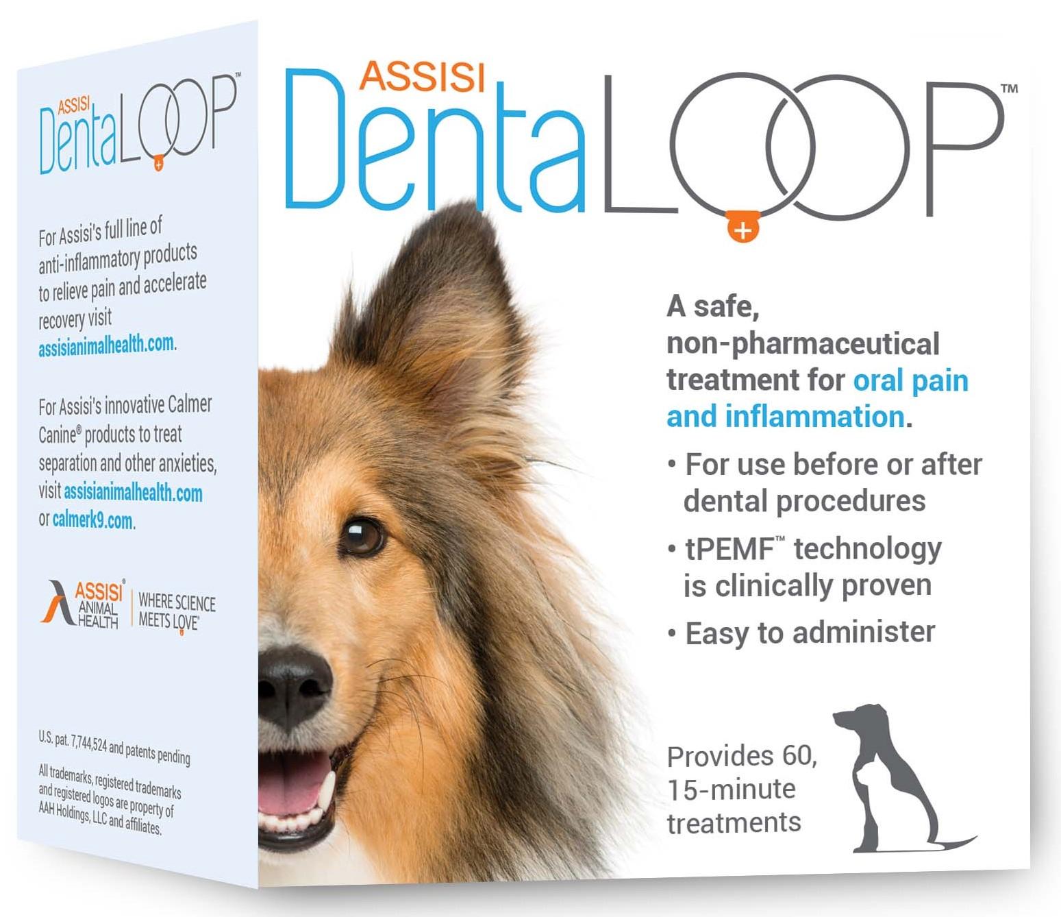 DentaLOOP Package